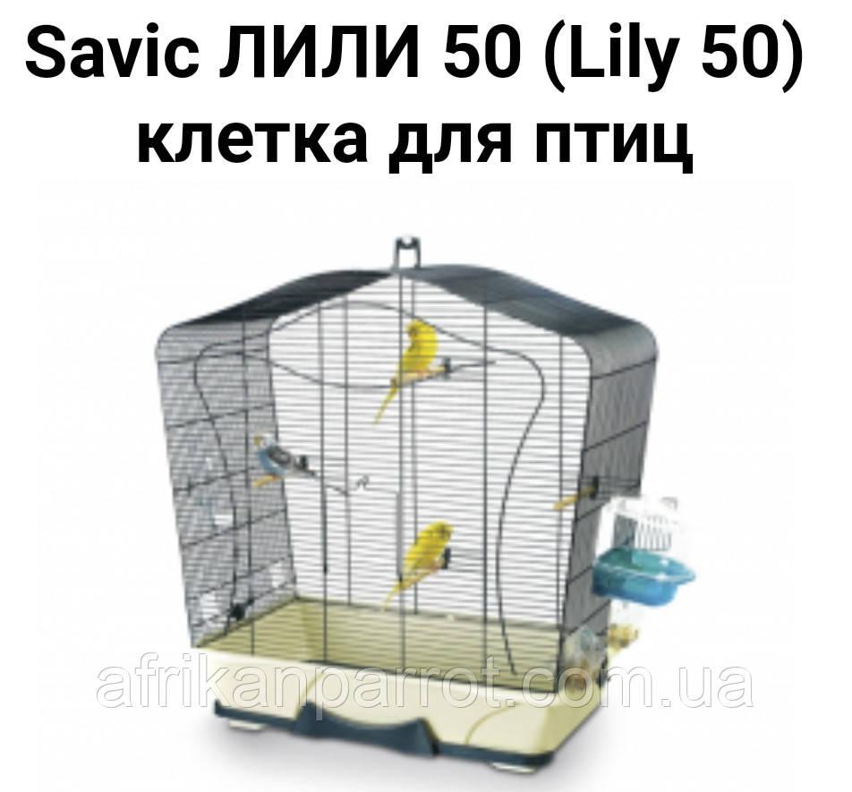 Лили 70×38×78