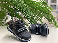 Кожаные деми ботинки для мальчика,Flamingo,р.22-26, мод. 0122
