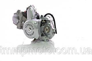 Двигатель 125куб Альфа / DELTA / ALFA / ACTIVE полуавтомат алюминиевый цилиндр, фото 3