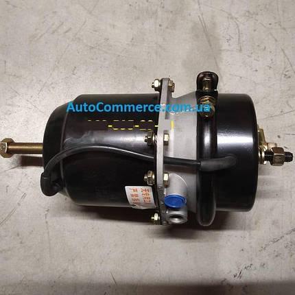 Энергоаккумулятор ХАЗ-3250 Анторус камера тормозная задняя, фото 2