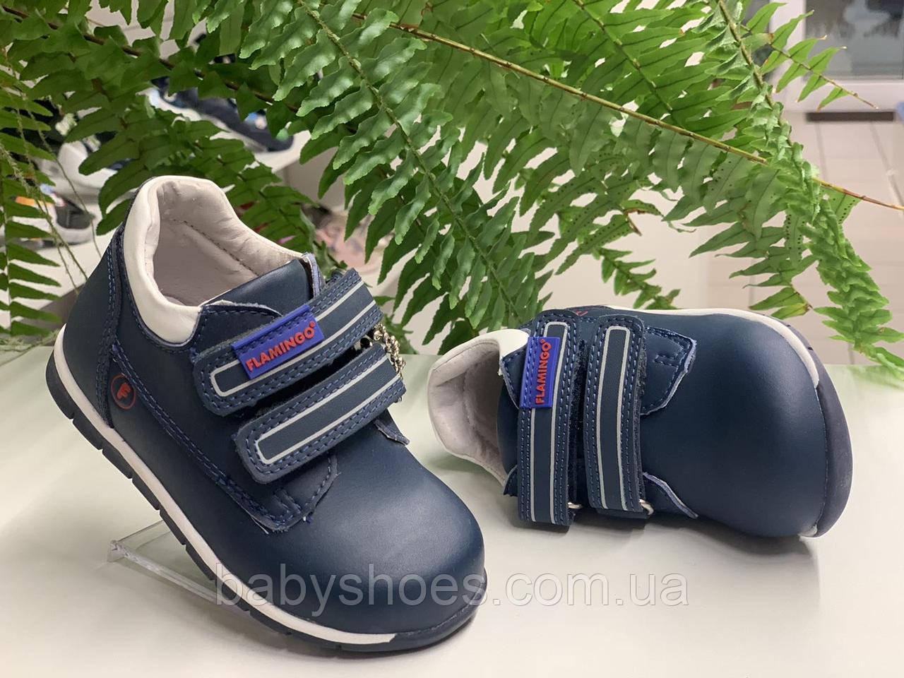 Кожаные ботинки для мальчика,Flamingo,р.23, FM-4
