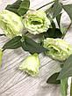 Искусственная эустома салатовая ( премиум , имитация натурального растения), фото 2