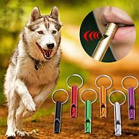 Свисток для дрессировки и подзыва собак (5см)