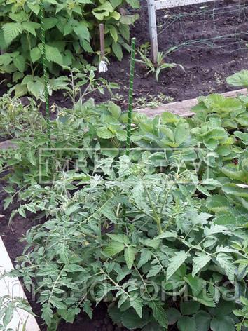 Опора для подвязки растений из композита, Ø  8 мм, высота 100 см, фото 2