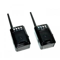 Радио приемник рация PTT USB SD Golon RX-D3 2 шт