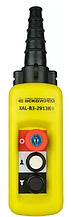 Пост кнопковий XAL-B3-2913К з ключем