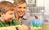 Аквариум самоочищающийся My Fun Fish, фото 3