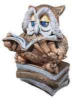 """Статуэтка """"Сова с книгой читает №2"""" Бронза 26 см"""