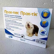 Прак-тик 625 мг (вес 22 - 50 кг) 3 пипетки Капли на холку от блох и клещей для собак (Germany, Prac-tic 11020), фото 3