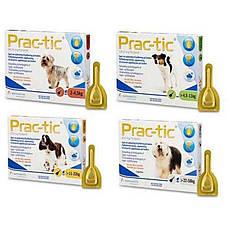 Прак-тик 56,25 мг (вес 2-4,5 кг) 3 пипетки Капли на холку от блох и клещей для собак (Germany, Prac-tic 11017), фото 3