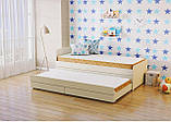 МАТРАС RELAX PLUS, беспружинный, наполнитель Orto foam, 16 см, 100 кг на 1 спальное место, фото 3