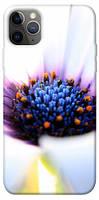 """Матовий чехол с цветочными принтами для Apple iPhone 12 Pro Max (6.7"""") (10 видов)"""