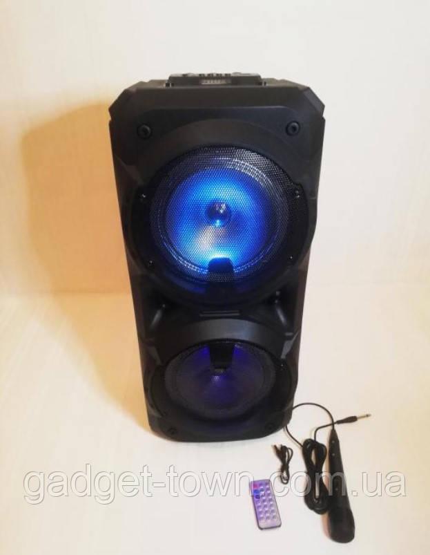 Бездротова портативна колонка з мікрофоном Ailiang Lige-A63