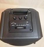 Бездротова портативна колонка з мікрофоном Ailiang Lige-A63, фото 3