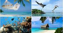 «А жизнь удалась!» – отдых с «картинки» в Доминикане в январе