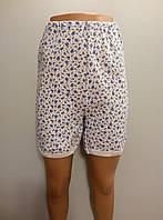 Трусы утепленные(панталоны) женские трикотажные на байке размер 60,62,64.