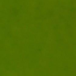 Набір Фетр Santi жорсткий, салатовий, 21*30см (10л)