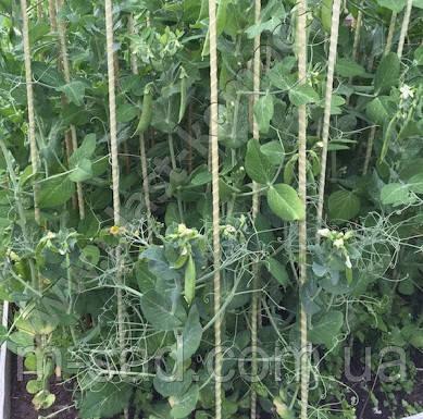 Опора для подвязки растений из композита, Ø 6 мм, высота 100 см