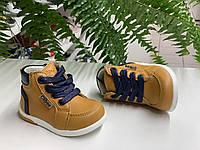 Демисезонные ботинки для мальчика Clibee,Польша. р.18-21 ДМ-90