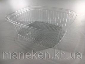Упаковка блистерная контейнер  SL800G (V350мл\внутр\разм143*117*44) (50 шт)