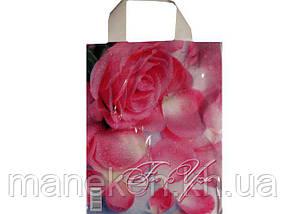 """Пакет ламінований з петлевою ручкою маленький """"Лепистки троянд"""" (23х29) 50мк ДПА (50 шт)"""