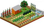 Схемы посадки овощей