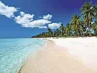 Хотите испытать райское наслаждение от отдыха? – туры в Доминикану в феврале