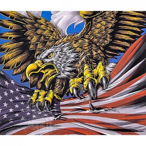 Картина по номерам 40x50см. 30445 DIY Орел, в подарочной упаковке, фото 2