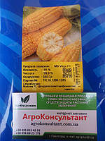 Насіння Кукурудза цукрова Вега F1, 0,5 кг May Seed Туреччина, фото 1