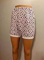 Трусы утепленные(панталоны короткие)  женские трикотажные на байке размер 56,58,60