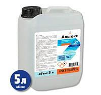 Альгіцид для басейну проти водоростей Window World Water Альгекс 5 л