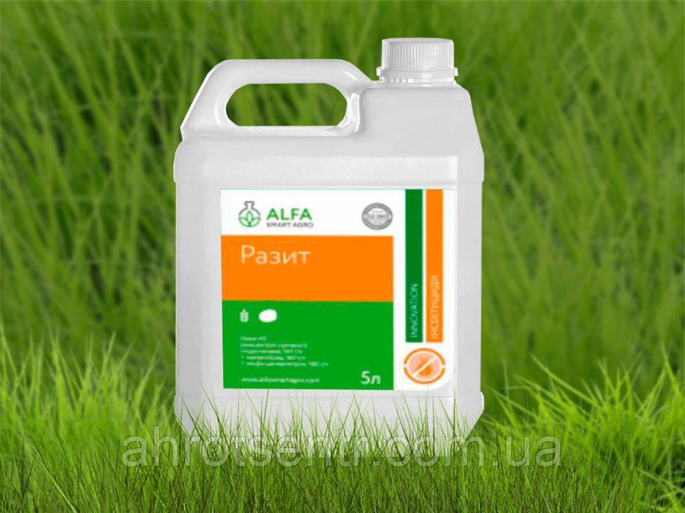 Инсектецид Разить, К. С. 5л Alfa Smart Agro