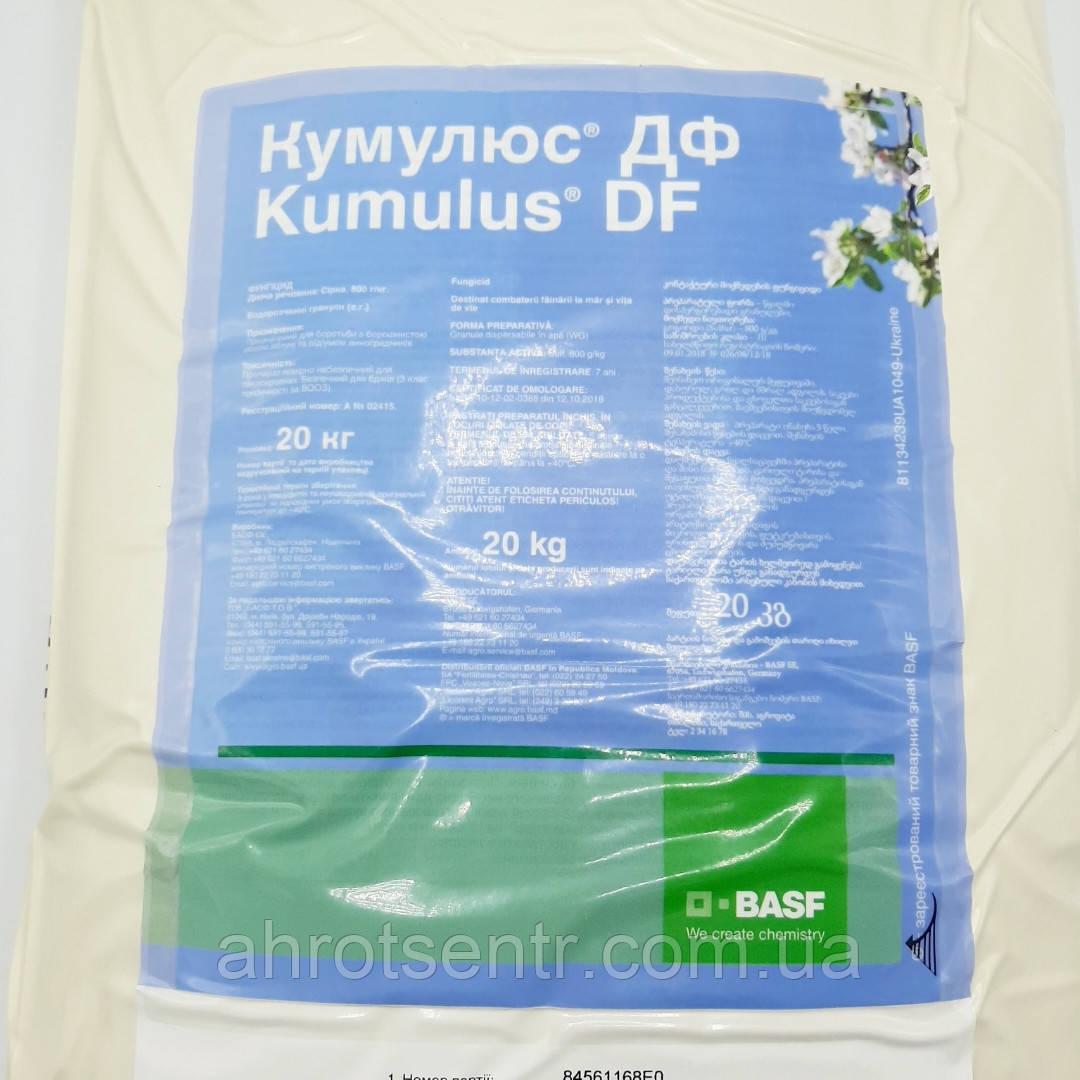 Фунгицид Кумулюс ДФ 20 кг Basf Басф Германия на основе серы