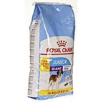 Корм для щенков гигантских пород от 8 до 24 месяцев 15+3кг, Royal Canin Giant Junior