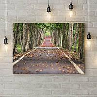 Картина на холсте на стену для интерьера дома Дорога через парк, 50х35 см