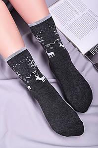 Носки женские махровые темно-серые размер 35-38 Житомир 127156P