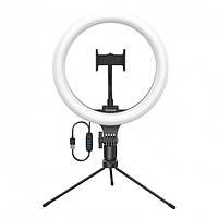 Кольцевая Лампа светодиодная LED 26 см с подсветкой с регулировкой яркости Baseus Live Stream