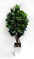 Дерево искусственное Фикус Широколистный 150см
