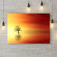 Картина на холсте на стену для интерьера дом Одинокое дерево в воде, 50х35 см