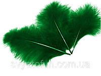 Перья натуральные для декора зеленые