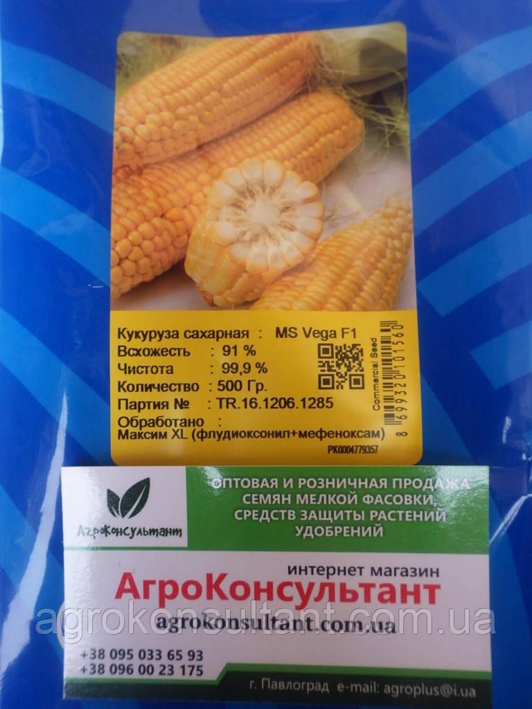 Насіння Кукурудза цукрова Вега F1, 0,5 кг May Seed Туреччина