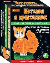 Набор для исследований Магические животные. Котик в кристалах 12100326Р 229338