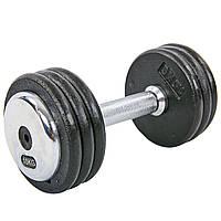 Гантель цельная профессиональная стальная 10 кг RECORD (1шт) TA-7231-10, фото 1