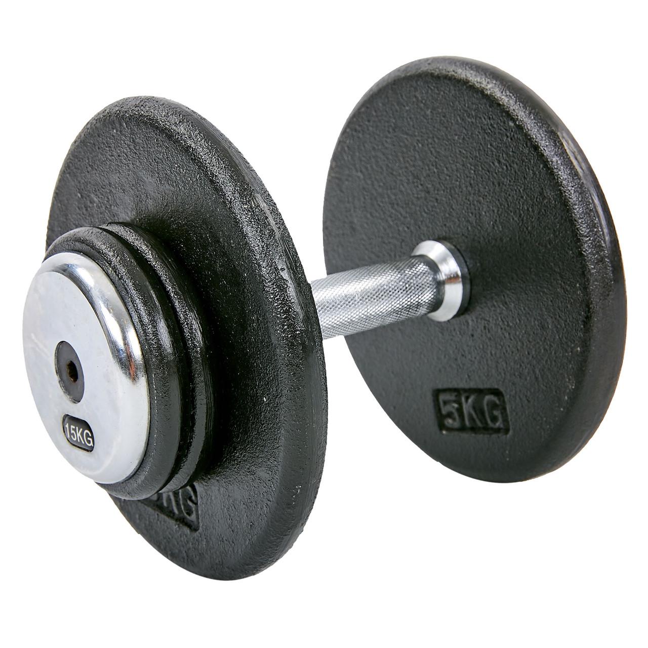 Гантель 15 кг профессиональная стальная RECORD (1шт) TA-7231-15