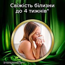 Рідкий концентрований порошок для прання Persil Premium Gel 5.8 л, фото 3