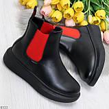 Яркие модные черные женские ботинки челси с красными вставками, фото 8