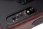Проигрыватель виниловых дисков с чемоданом Camry переносной, фото 8