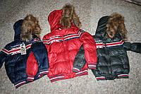 Зимние куртки Гло-Стори