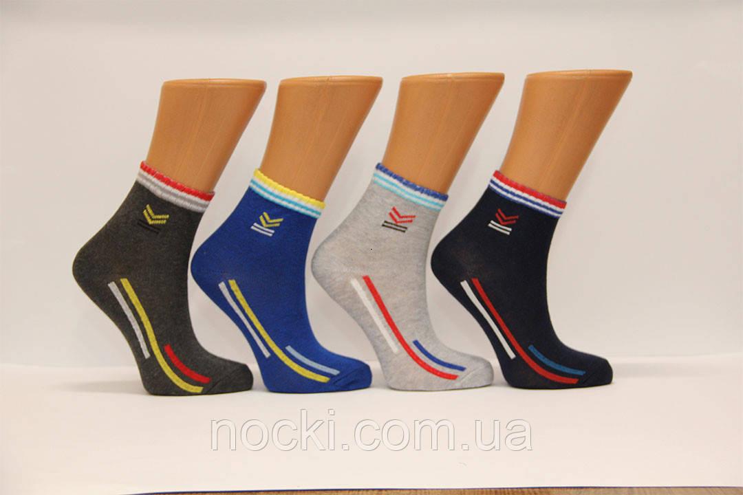 Дитячі шкарпетки середні стрейчеві комп'ютерні Montebello Ф3 б/р 9 спорт класика
