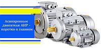 Асинхронные двигатели АИР - коротко о главном